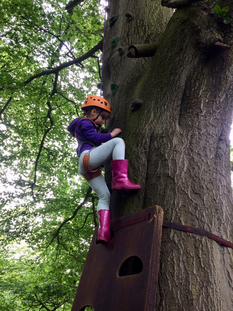 She gave it a great go and got over halfway up this enormous tree - well done her!